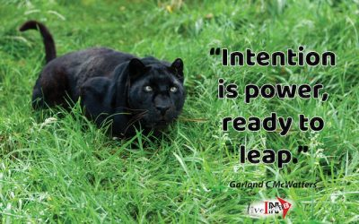 Intention is power, ready to leap