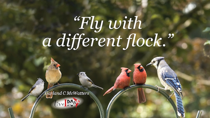 Garland McWatters, INPowering Thoughts, author, Tulsa Oklahoma, diversity, learning new things, risk taking, making friends, birds of a feather